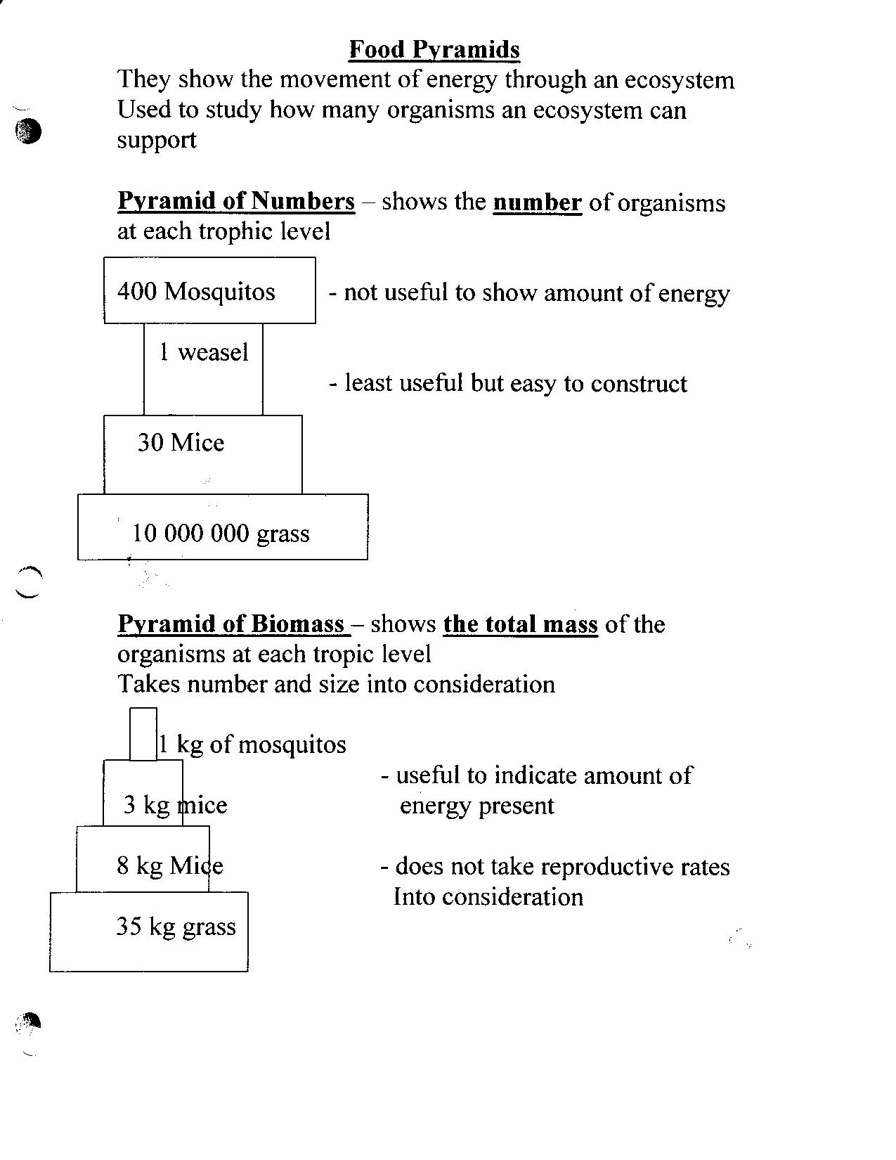 Bill Nye The Science Guy Erosion Worksheet – Bill Nye Rocks and Soil Worksheet